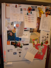 Fridge_pic