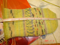 Opal_cotton_sock_001