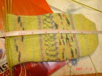 Opal_cotton_sock_001
