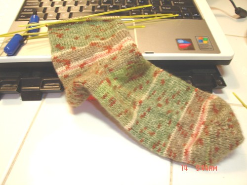 Austermann_step_03_grass_sock_one_on_the_1